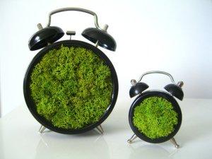 phytoDeco alarm clock