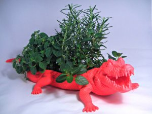 AnimalPlanters alligator