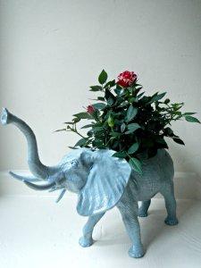 AnimalPlanters elephant
